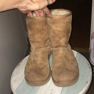 Classic UGG in Chestnut size 8